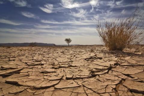 Ученые выяснили, когда Земля превратится в