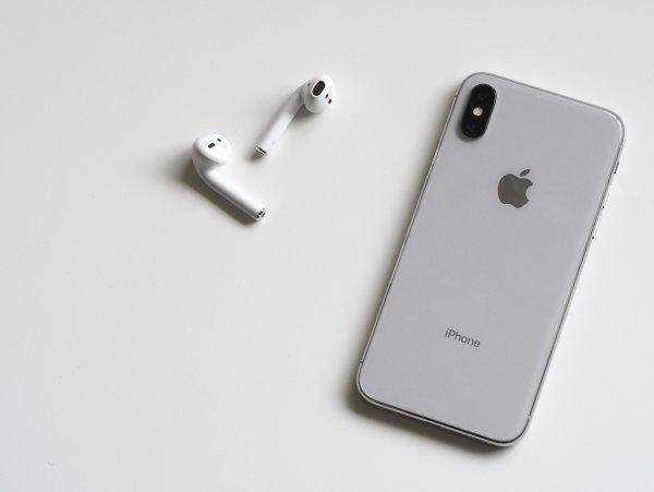 iPhone X заработал после двух недель на дне реки