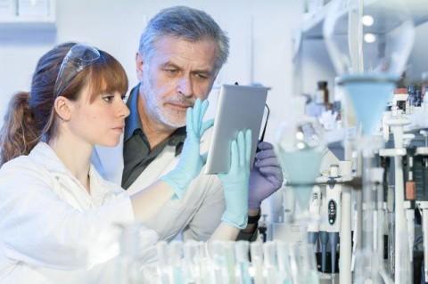 Ученые нашли новые виды клеток в эпителии