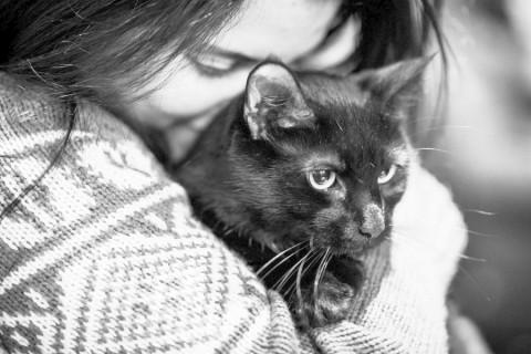 Ученые пояснили, почему кошки больше любят женщин