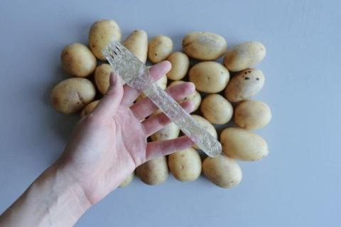 Шведский студент создал разлагающийся пластик из необычного материала