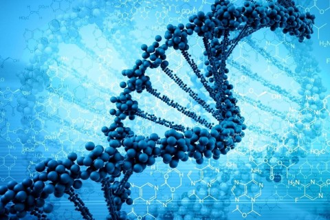 Китайская компания впервые в истории вывела на орбиту банк генов человека