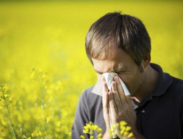 Учёные изобрели портативное устройство, отслеживающее аллергены в воздухе