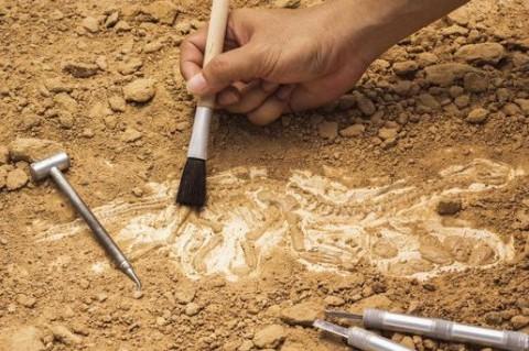 Археологи обнаружили руины старинного города в Греции