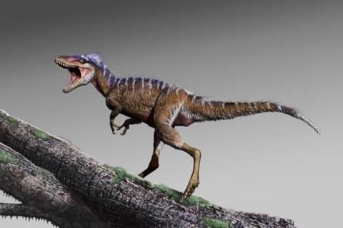 Ученые обнаружили скелет мини-тираннозавра