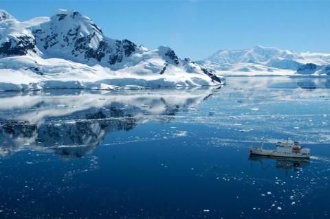 В Антарктиде вновь могут появиться леса