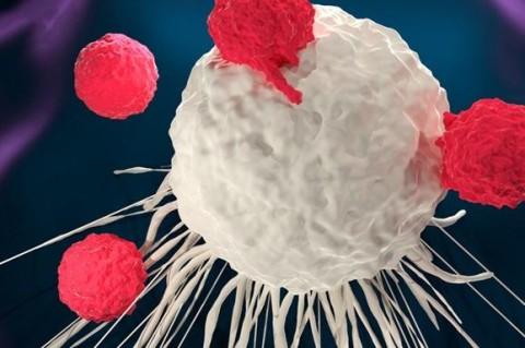 Ученые научились программировать рак