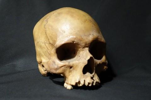Ученые воссоздали на фото лицо жившего 1300 лет назад человека