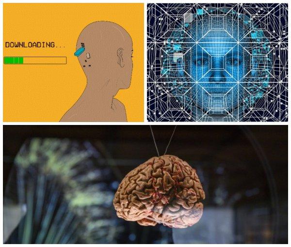До конца XXI века инженеры научатся загружать мозг на компьютер
