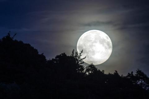 В NASA рассказали о стоимости присутствия на Луне