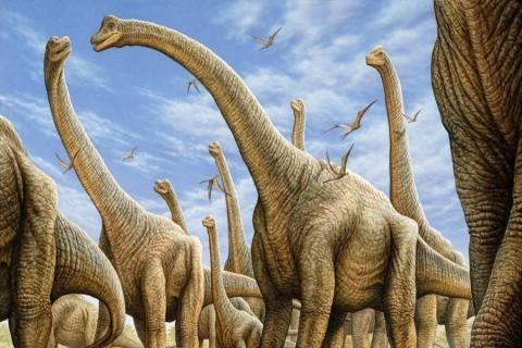 В Китае ученые обнаружили следы динозавра возрастом 100 млн лет