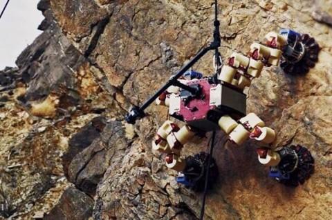 Инженеры разработали робота-скалолаза, который нашел окаменелости возрастом 500 млн лет