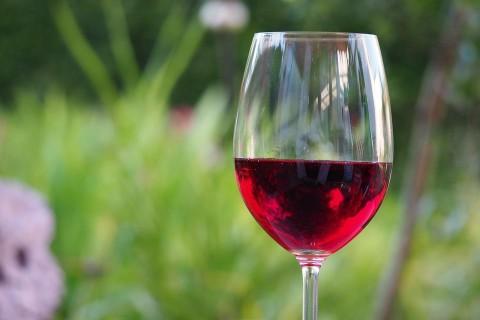 В NASA рассказали, как вино поможет астронавтам добраться до Марса