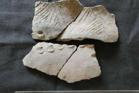 Обнаружены следы неизвестной цивилизации