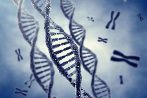 Исследователи выяснили, какая группа людей предрасположена к раку