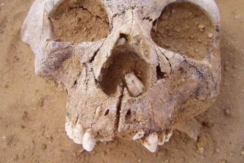 Ученые нашли древние захоронения египтян, которым не меньше 6000 лет