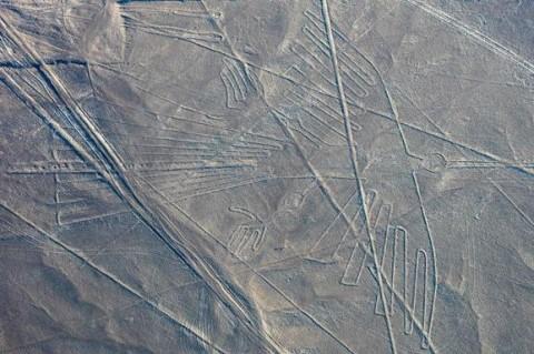 В пустыне Перу нашли больше ста гигантских изображений 100 года до нашей эры