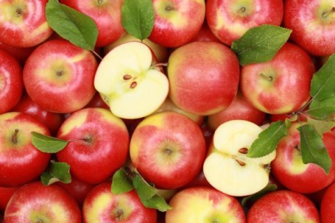 Американские фермеры вывели сорт яблок, которые не портятся год