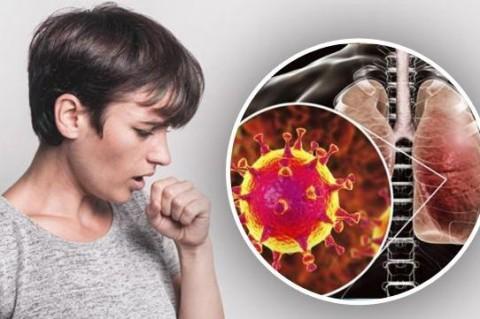 Ученые заявили, что коронавирус остается в легких после смерти