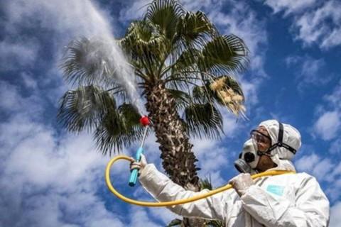 Ученые доказали, что климат и влажность никак не влияют на коронавирус