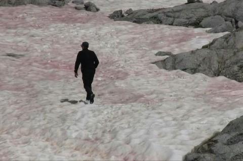 Цветные горы: итальянские Альпы окрасились в розовый цвет