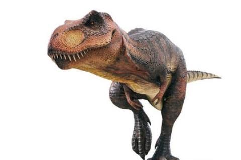 Крохотный убийца жуков: ученые нашли маленького динозаврика