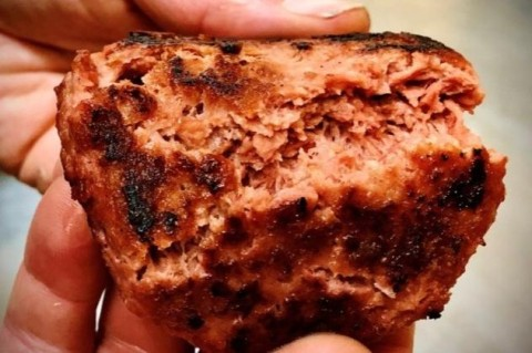 В Новой Зеландии собираются производить мясо из конопли, в котором будет больше животного белка