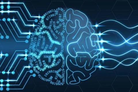 Ученые создали алгоритм, способный определять интеллект пользователей Сети