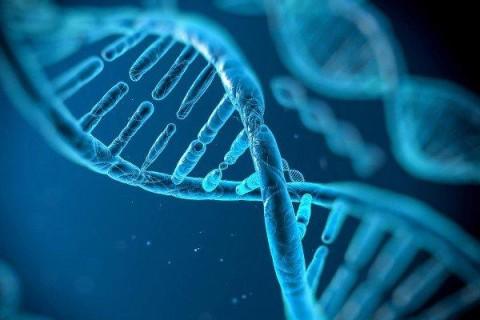 Ученые обнаружили в организме человека древнии гены, которые обеспечат защиту от рака