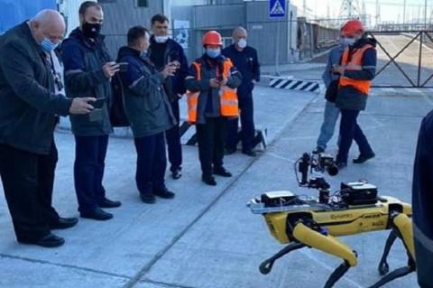 В Чернобыле прошли испытания робота-собаки