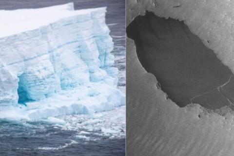 Самый крупный в мире айсберг раскололся на части