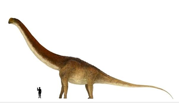 В Аргентине нашли останки крупнейшего динозавра