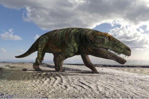 Ученые нашли в горах Альп следы 250 млн-летней рептилии, которая не должна была там находится