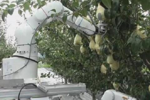 В Японии создали робота-фермера c искусственным интеллектом