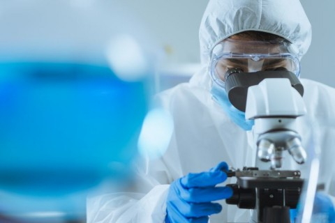 Ученые связываю пандемию коронавируса с изминениями климата