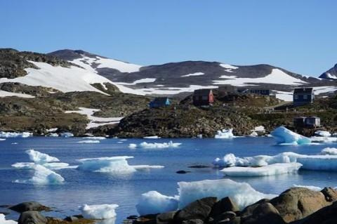 Исследователи нашли подо льдом Грендландии остатки растений, которые приоткрывают тайны прошлого