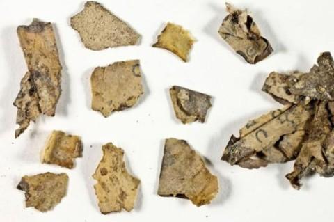 В Израиле археологи обнаружили фрагменты библейского свитка
