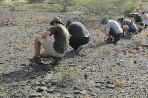 В Кении самые древние останки человека