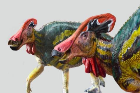 Мексиканские археологи нашли неизвестный вид динозавров