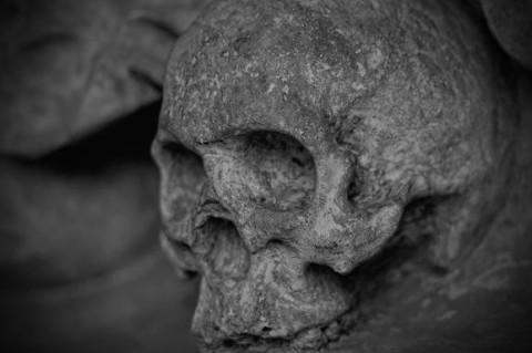 В Латвии археологи нашли древний штамм чумы