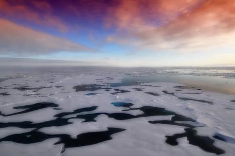 ООН: В Антарктиде зафиксировали новый температурный рекорд