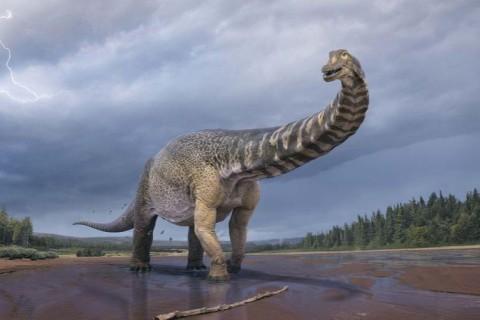 Ученые смогли узнать, как часто на Землю падает убивший динозавров астероид