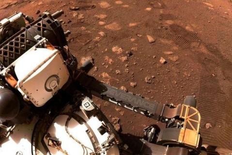 Есть ли на Марсе жизнь: NASA показало новые кадры с Красной планеты
