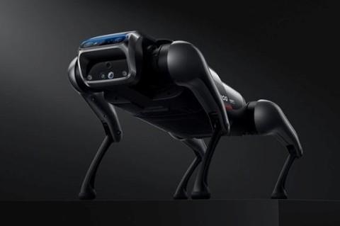 Будущее уже здесь: Xiaomi представила нового робопса