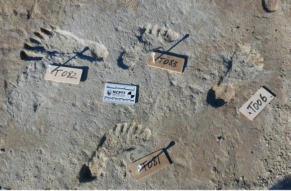 В США археологи нашли следы человека, которым более 20 тыс. лет