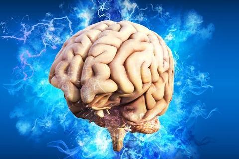 Ученые узнали, какие нейроны и области мозга человека отвечают за принятие решений