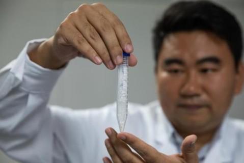 Китайские ученые первые в мире придумали, как искусственно синтезировать крахмал