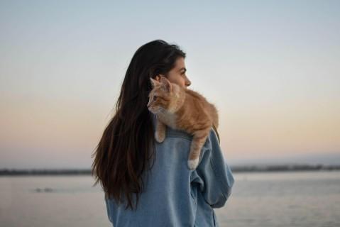 В целях безопасности: в Британии изобрели приложение, которое отслеживает одиноких женщин